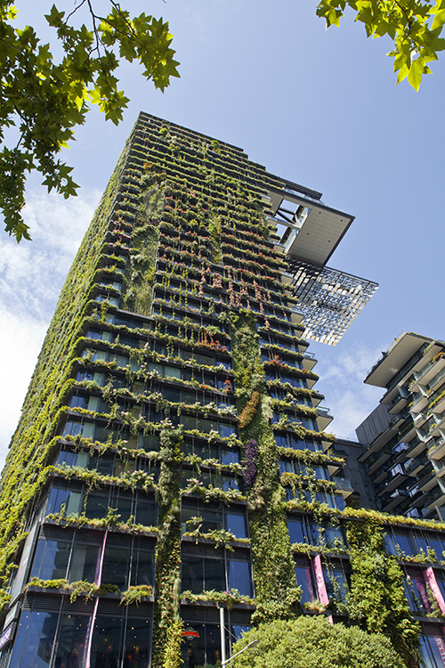Best Green Wall Building China