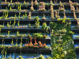 green-solutions-for-buildings