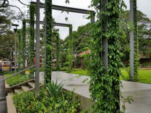 contemporary garden structures