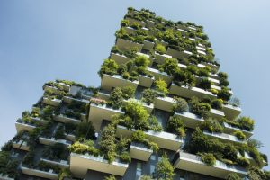 Can Green Facades Improve Air Quality and Wellbeing? / Tensile Design & Construction