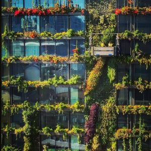 Interesting Measures, Facts and Stats on Green Facades / Tensile Design & Construct