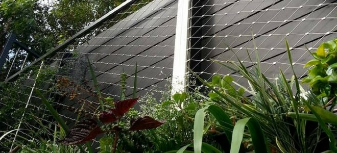 Architectural Considerations for Green Walls / Tensile Design & Construct