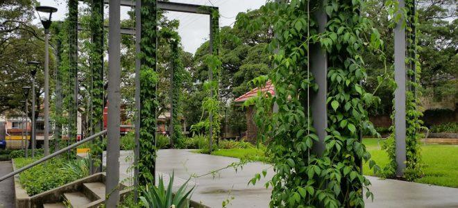 How to Design a Vertical Garden / Tensile Design & Construct