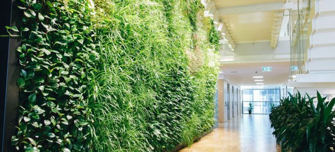 Interior Green Facades: What You Need to Know / Tensile Design & Construct