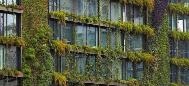 Breathing New Life into Your Building with a Living Wall / Tensile Design & Construct