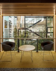 5 Design Considerations for Living Walls / Tensile Design & Construct