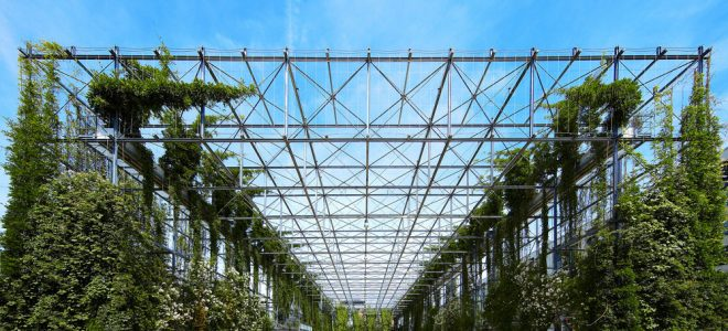The Evolution of Vertical Gardens / Tensile Design & Construct