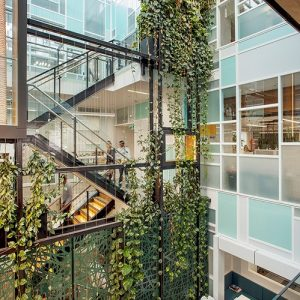 Bringing the Outdoors In Through Internal Green Spaces / Tensile Design & Construct