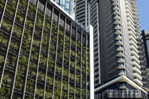 5 Ways Design and Construction Influence Green Walls / Tensile Design & Construct