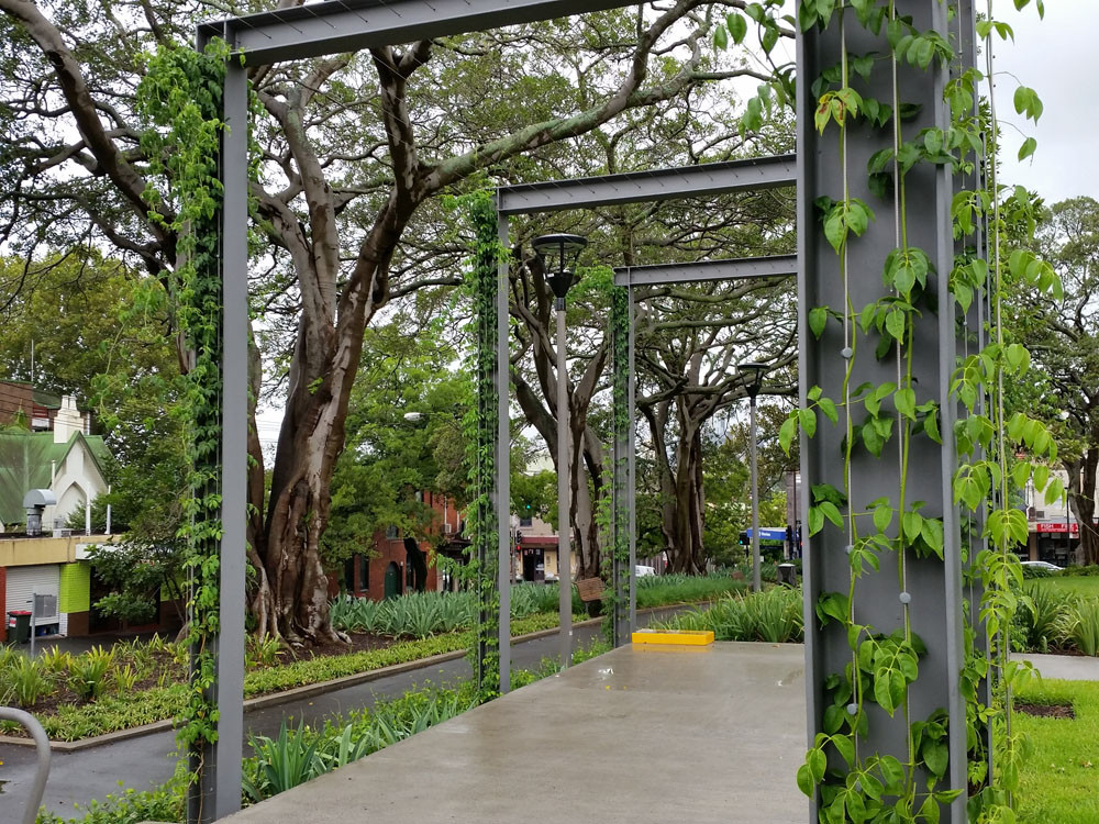 Using Vertical Garden Frames as Plant Support Structures / Tensile Design & Construct
