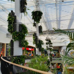 Considerations for Maintaining a Vertical Gardening System / Tensile Design & Construct