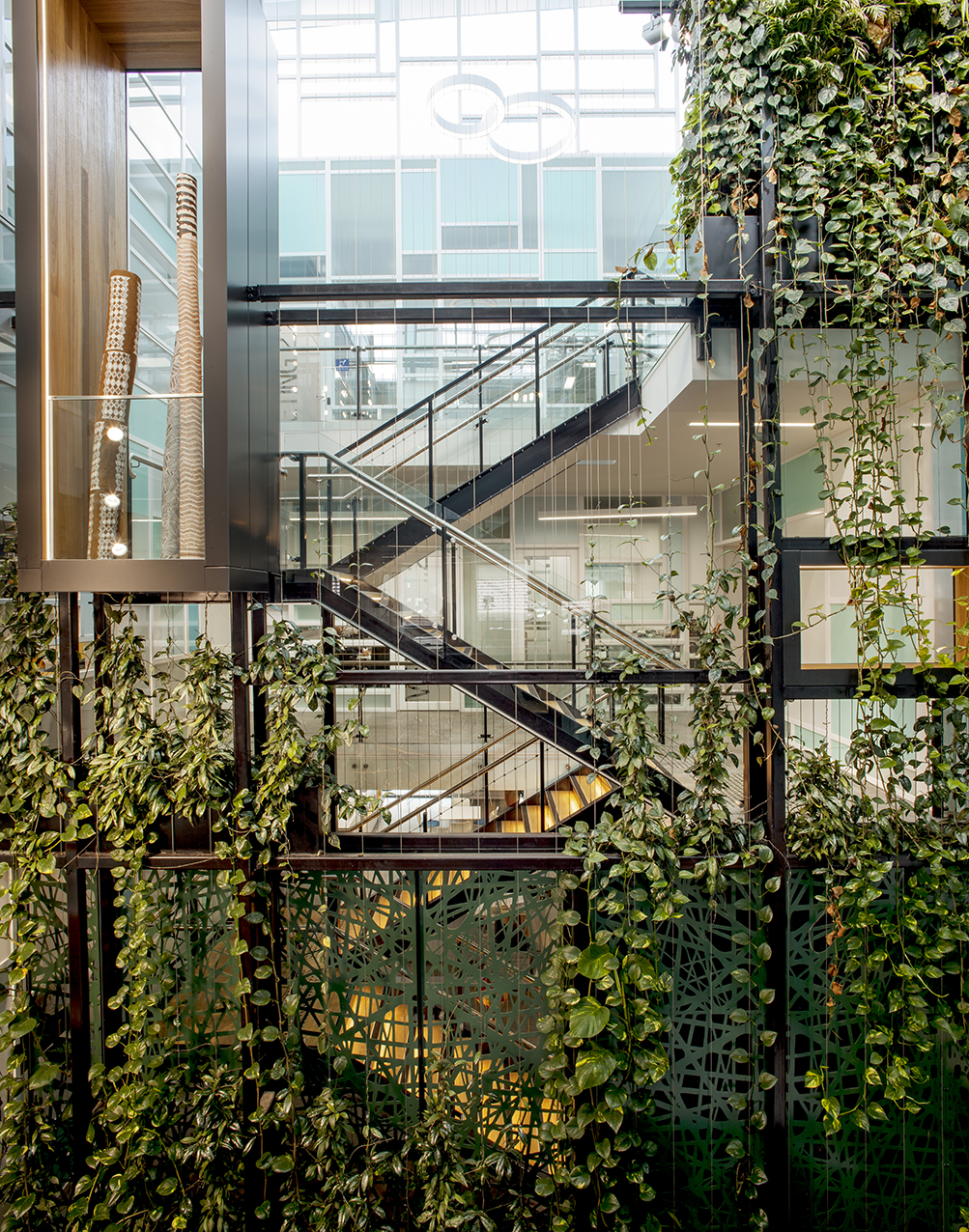 How Indoor Green Walls Bring Nature into Urban Environments / Tensile Design & Construct