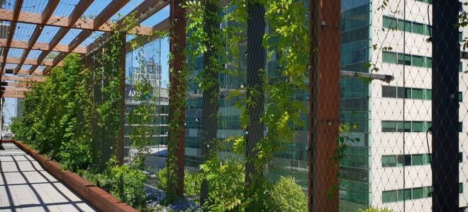 3 Key Things to Know About Green Walls and Buildings / Tensile Design & Construct