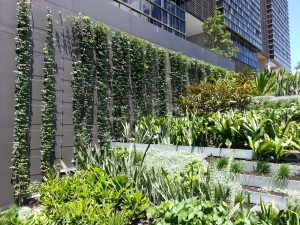 Green Facade Loads: 4 Things You Need to Know / Tensile Design & Construct