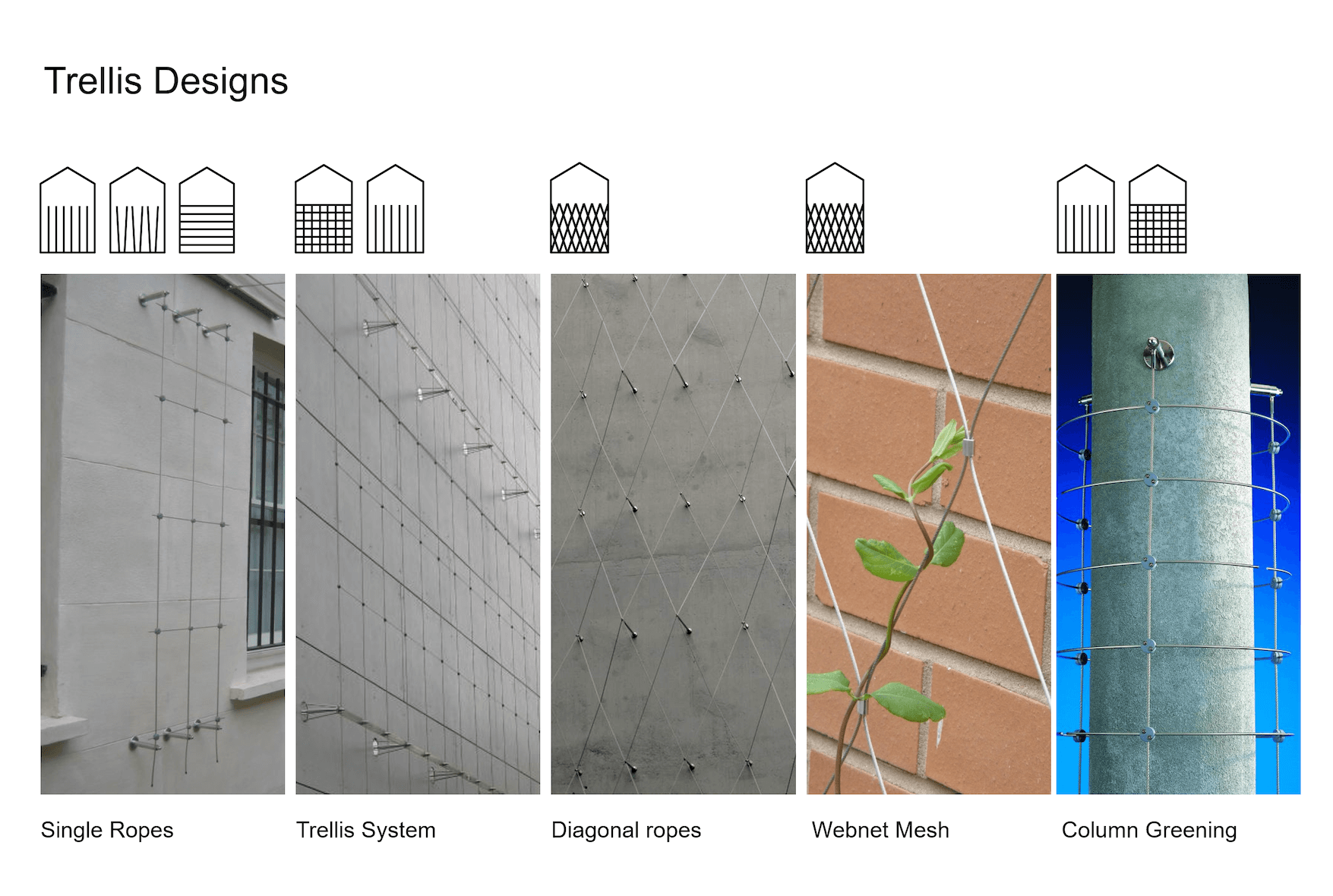 Trellis Systems for Living Walls / Tensile Design & Construct