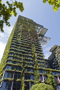 3 Popular Types of Vertical Gardening Systems / Tensile Design & Construct