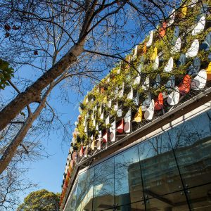 Choosing the Best Type of Green Facade for Your Building / Tensile Design & Construct