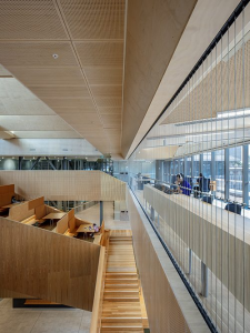 Balustrade Comparison: Railings vs Stainless Steel Cable / Tensile Design & Construct