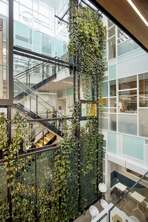 Integrating Biophilic Architecture into Commercial Buildings / Tensile Design & Construct