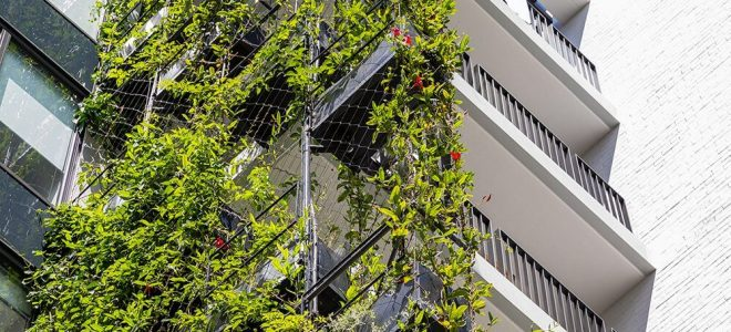 6 Timeless Green Facade Inspirations from Mother Nature / Tensile Design & Construct