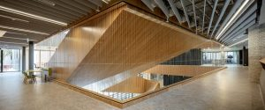Addressing Safety Concerns for Commercial Atriums / Tensile Design & Construct