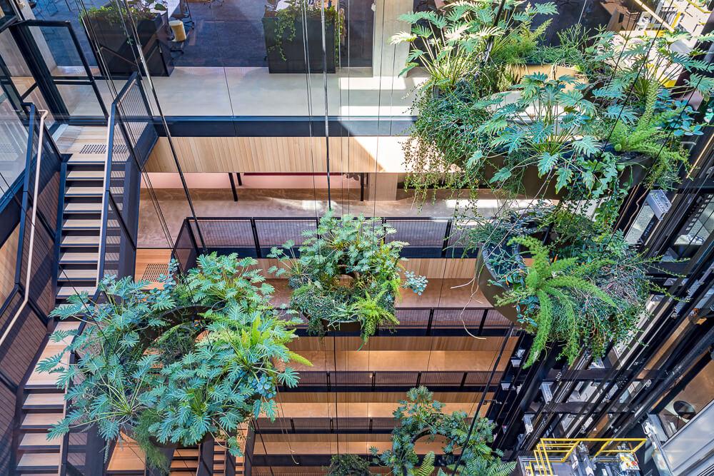 4 Benefits of a Tensile Facade or Vertical Garden / Tensile Design & Construct