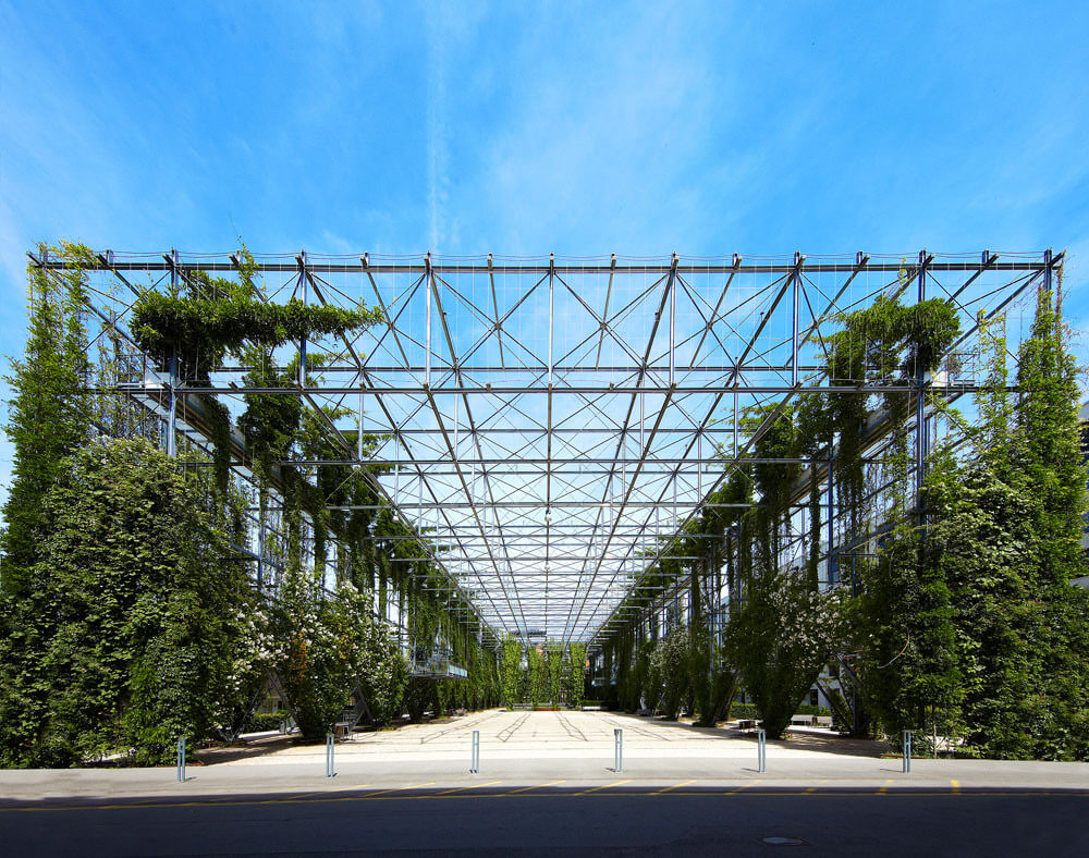 Using Tensile System Solutions to Support Vertical Gardens / Tensile Design & Construct